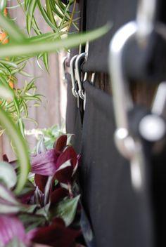 The Green Pockets wall planter detail    #thegreeenpockets #verticalgarden #wallplanter
