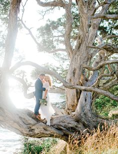 New Zealand elopement shot by Nadia Meli Photography