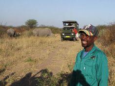 Umtrunk mit Nashörnern, Namibia 2012 Namibia, Pictures, Rhinoceros, Travel Report