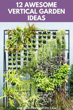 One of the very best ways to expand your gardening space and get more produce each year is to introduce vertical gardening elements. There are many, many ways to create a vertical garden beyond the industrial-looking hydroponic setups you see all over the web.It's entirely possible for vertical gardening to look as great as it tastes. So we've collected a dozen awesome vertical garden ideas for you to try this year. #verticalgarden #verticalgardening #gardeninspiration Garden Tips, Herb Garden, Vegetable Garden, Garden Ideas, Hydroponics Setup, Spiral Garden, Growing Veggies, Ways To Recycle, Herbs Indoors