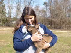 #goatvet likes this article about goats on a small US  farm