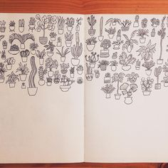 Cactus Club — Houseplant sketches. #doodle #sketchbook #cactus...