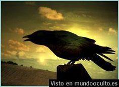 La leyenda del cuervo