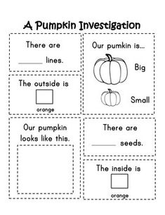 An organized worksheet that allows for your classroom's very own pumpkin investigation!