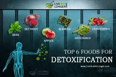 Toxic Food Top 6 Foods For Detoxification Even if we take suitable precautions to drink pure water and eat healthy foods, it is a fact that our body can get affected or suffer from ailments by toxins. The three types of pollution Foods To Avoid, Healthy Foods To Eat, How To Stay Healthy, Healthy Life, Healthy Living, How To Make Sprouts, Tips To Increase Height, Kidney Friendly Foods, Healthy Fruits And Vegetables