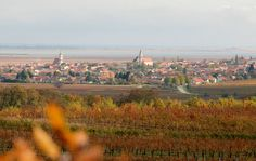 #Burgenland #austria #Austrian