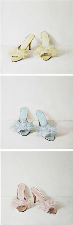 Still Life Paintings Holly Farrell