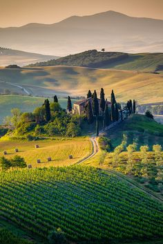 Tuscany, Italy. Portrait vertical view of a beautiful and lonely farmhouse surrounded by the green and golden hills of Val d'Orcia