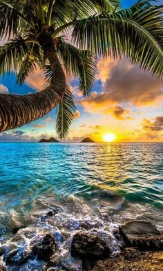 Travel Discover Sunrise on Lanikai Beach Oahu Hawaii Beautiful Sunrise Beautiful Beaches Beautiful Beach Pictures Beautiful Images Landscape Photography Nature Photography Photography Tricks Digital Photography Sunrise Photography Beautiful Sunrise, Beautiful Beaches, Nature Pictures, Beautiful Pictures, Scenery Pictures, Amazing Nature, Belle Photo, Beautiful Landscapes, Beautiful Nature Wallpaper