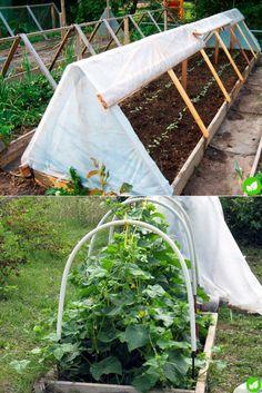 Garden Design - New ideas Small Vegetable Gardens, Vegetable Garden Design, Small Gardens, Raised Garden Planters, Raised Garden Beds, Vege Garden Ideas, Garden Netting, Potager Bio, Cold Frame
