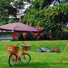 Una Brownieria ambulante en Bogotá. Conoce nuestros productos y servicios. Contáctanos. #brownieriamorenobrownie #brownieriaambulante #morenobrownie #browniescontoppings#carrotcake#oatmealcookies #lemoncake #productoshorneadosmorenobrownie#baking #horneando #startuplifestyle #foodbike #bicicleta #emprendiendo#bogotaenbici#bogotá #repartiendoamorydulzura