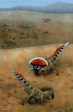フリルを誇示するプロトケラトプス(Protoceratops andrewsi)...