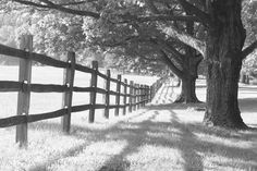 Photo taken at Oatlands Plantation in June of 2012. This historic farm is located in Leesburg, Virginia.