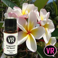 10ml Frangipani Fragrance Oil for Home Fragrancing and Cosmetic, Toiletry, Candles and Incense  production