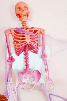 Make a colorful ombre skeleton for Halloween in just one quick step! Halloween Party Snacks, Chic Halloween, Kawaii Halloween, Diy Halloween Decorations, Family Halloween, Halloween House, Holidays Halloween, Halloween Crafts, Pink Halloween