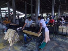 Pressing Paper - The Process - Aliya Dung Paper Elephant, Paper, Elephants