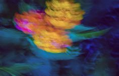 Night is coming with a flood of flowers by Michaela Sibi #abstractphotography #photography