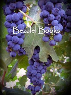 Bezalel Books: 2013 Prize Sponsors for the #hsba2013