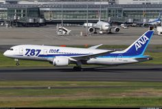 All Nippon Airways - ANA JA812A Boeing 787-881 Dreamliner aircraft picture