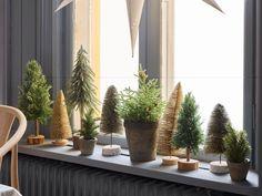 MINA Minitre   Bohus Plants, Kunst, Plant, Planets