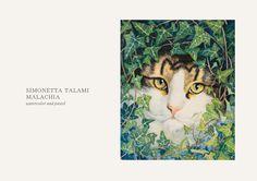 Illustration - CATS