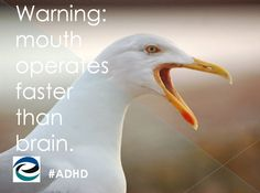 a little ADHD humor from the Edge Foundation
