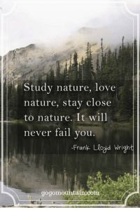 """Hiking and Nature Quotes and sayings: """"Study nature, love nature, stay close to nature. It will never fail you."""" -Frank Lloyd Wright - 15 Hiking Quotes to Inspire Adventure Now Quotes, Great Quotes, Life Quotes, Inspirational Quotes, Rumor Quotes, Mindset Quotes, Motivational Quotes, Mature Quotes, Play Quotes"""