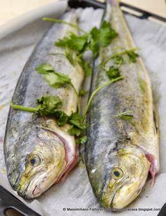 La Piccola Casa: Cucinare il pesce in forno: Lampuga con finocchietto, erba luisa e coriandolo al porto bianco