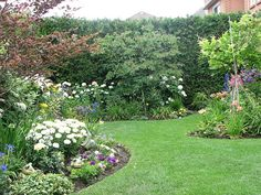 Lovely small garden (since most suggestions seem to be 'pave it over, stick some pot plants in it', this seems like a breath of fresh air.