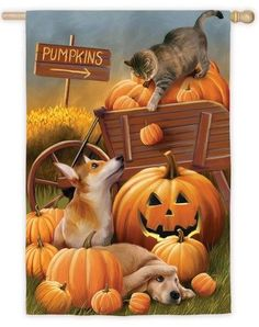 Pumpkins Puppies and Kitty Suede Reflections House Flag