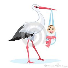Stork carrying baby  on white
