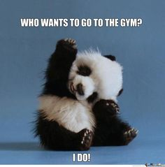 Go'in to the Gym...just to meet this cutie!