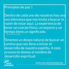 (20) SocialGest Calendar, The Little Prince, The Voice, Peace, Life Planner