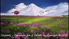 Vivaldi - Concerto for 2 Flutes in C major RV 533
