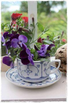 tazas flores Tazas de Porcelana, Usos Originales