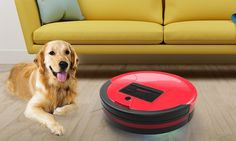 bObsweep Standard or Pet-Hair Robotic Vacuum and Mop. https://www.groupon.com/deals/gg-bobsweep-robotic-vacuum-and-mop-4