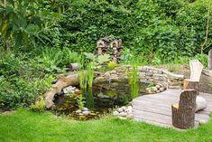 1000 images about pond ideas on pinterest ponds raised for Wildlife pond design uk