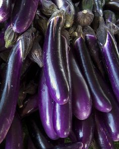 Eggplants by Robert Couse-Baker