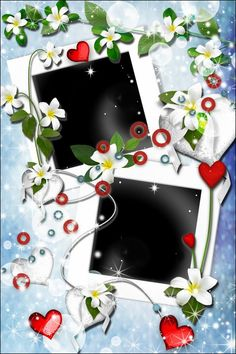 2 psd Frames for Photoshop - White flowers ( free 2 photo frame psd, free download )