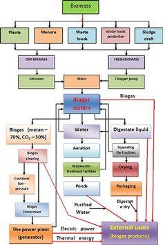 Biogas Production | Biogas production and product options