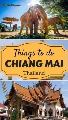 We have put a list together for you of the best things to do in Chiang Mai. Chiang Mai is a happening place and there is so much to see and do. Don't miss this city off your list of places to visit in Thailand. Happy planning and enjoy our list of places to visit in Chiang Mai.