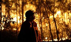 Australia: Firefighter numbers 'will need to double by 2030 as climate change bites'     Climate Council's first report says more professionals will be needed to keep pace with growing population and bushfire risk [December 2013 story]