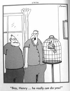 """The Far Side"" by Gary Larson. Far Side Cartoons, Far Side Comics, Funny Cartoons, Cartoon Network Adventure Time, Adventure Time Anime, Gary Larson Far Side, Engineering Humor, Physics Humor, Gary Larson Cartoons"