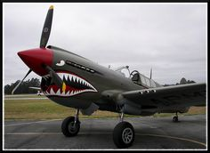 p-40 warhawk-- infamous sharkmouth this warbird seemed designed for it!!