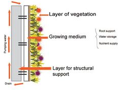 hydroponics wall - Google Search