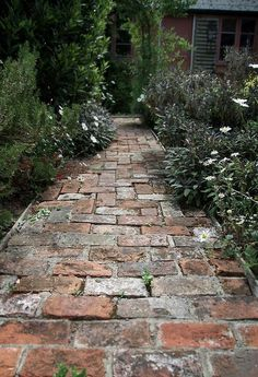 small path made of old bricks in a cottage herb garden. we could copy this for our little herb garden small path made of old bricks in a cottage herb garden. we could copy this for our little herb garden Brick Garden, Garden Paving, Garden Paths, Herb Garden, Brick Pathway, Concrete Walkway, Red Brick Paving, Brick Courtyard, Bush Garden