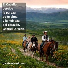 Gabriel, Horses, Mountains, Country, Quotes, Travel, Animals, Life, Style