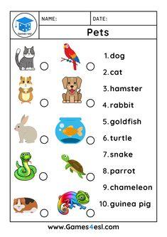 Esl Worksheets For Beginners, English Worksheets For Kids, English Lessons For Kids, English Class, Learn English, Teaching Kids, Kids Learning, Animal Worksheets, Pet 1