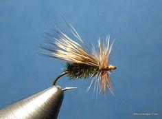 Peacock Caddis | www.johnkreft.com