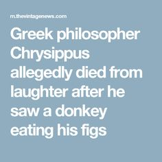 Greek philosopher Chrysippus allegedly died from laughter after he saw a donkey eating his figs